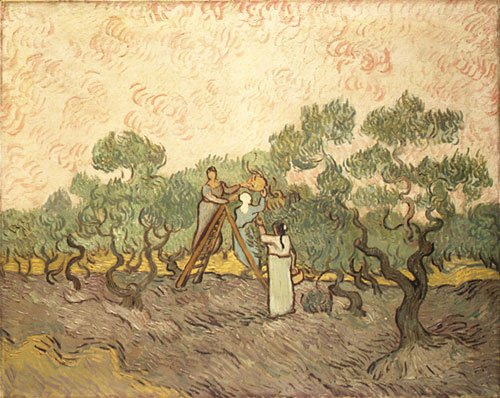 Women Picking Olives | Vincent van Gogh | Oil Painting