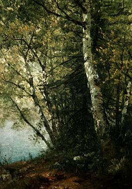 Study of Beeches 1872 | John F Kensett | Oil Painting