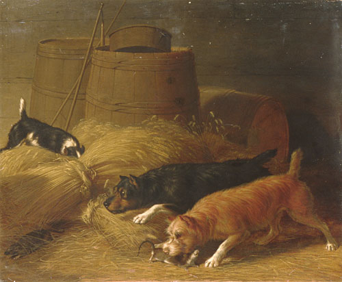 Rats amongst the Barley Sheaves 1851 | Thomas Hewes Hinckley | Oil Painting