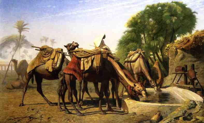 Camels at a Watering Trough 1857 | Jean Leon Gerome | Oil Painting
