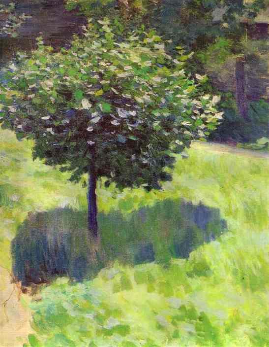 A Tree Study | Musatov Victor Borisov | Oil Painting