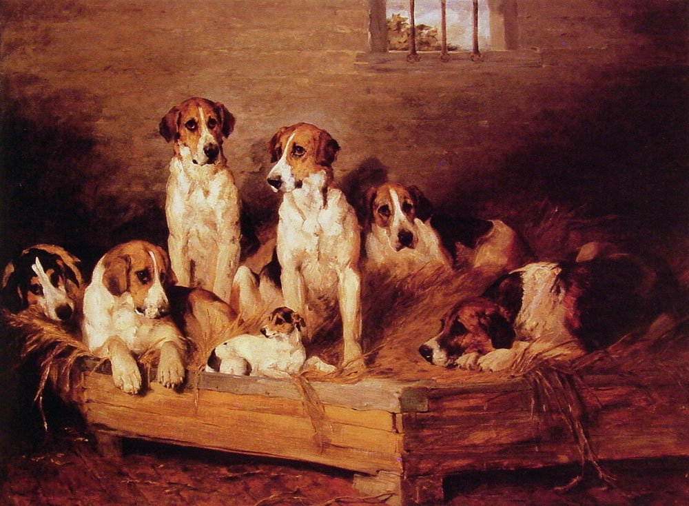 Foxhounds and Terriers in a Kennel | John Emms | Oil Painting