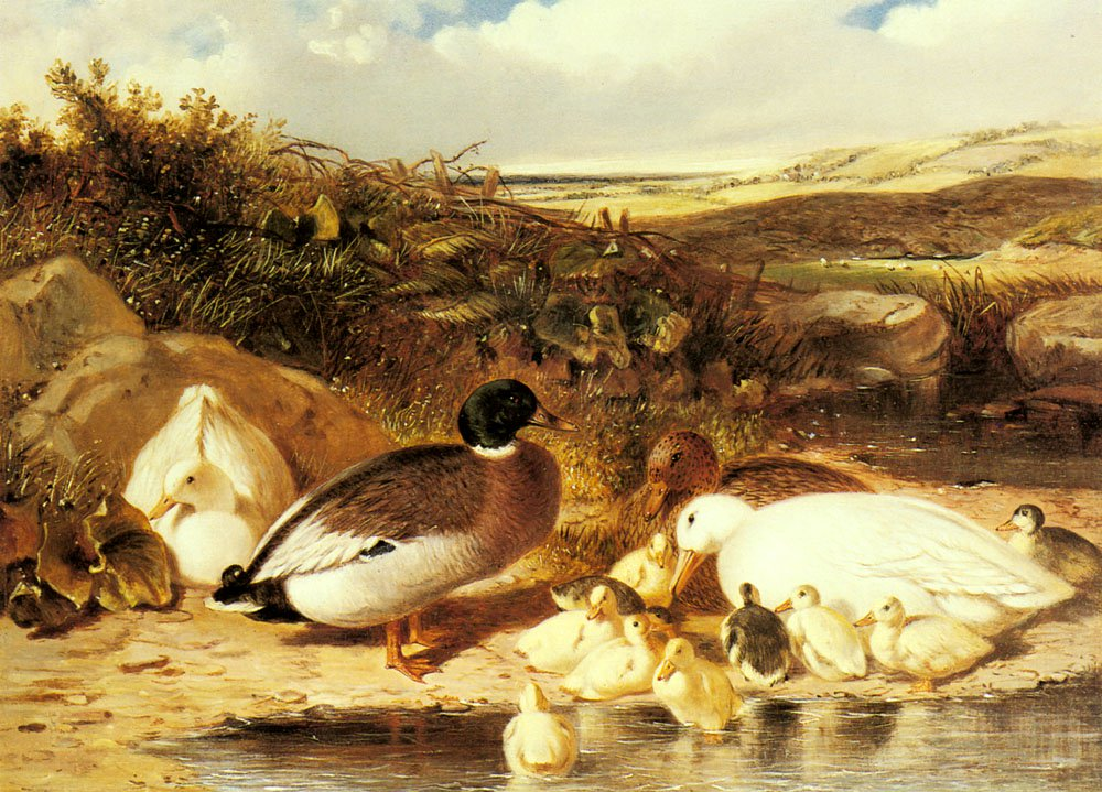 Mallard Ducks and Ducklings On A River | John Frederick Snr Herring | Oil Painting