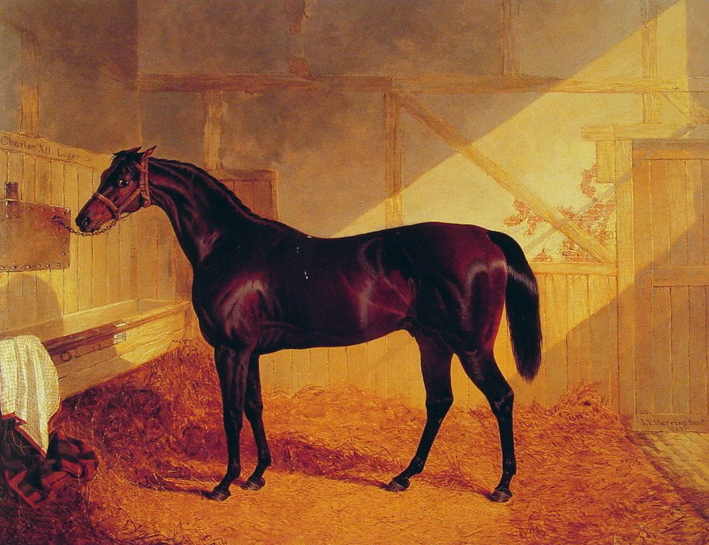 Mr Johnstones Charles XII in a Stable | John Frederick Snr Herring | Oil Painting