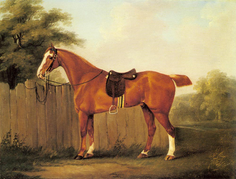 A Chestnut Hunter Tethered To A Fence | John Nost Sartorius | Oil Painting