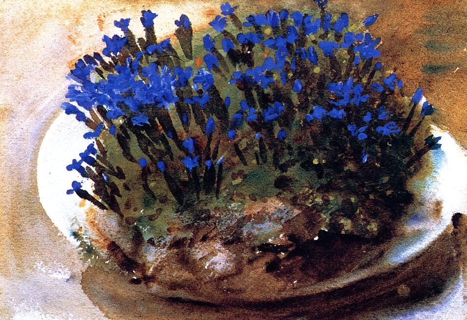 Blue Gentians 1905 | John Singer Sargent | Oil Painting