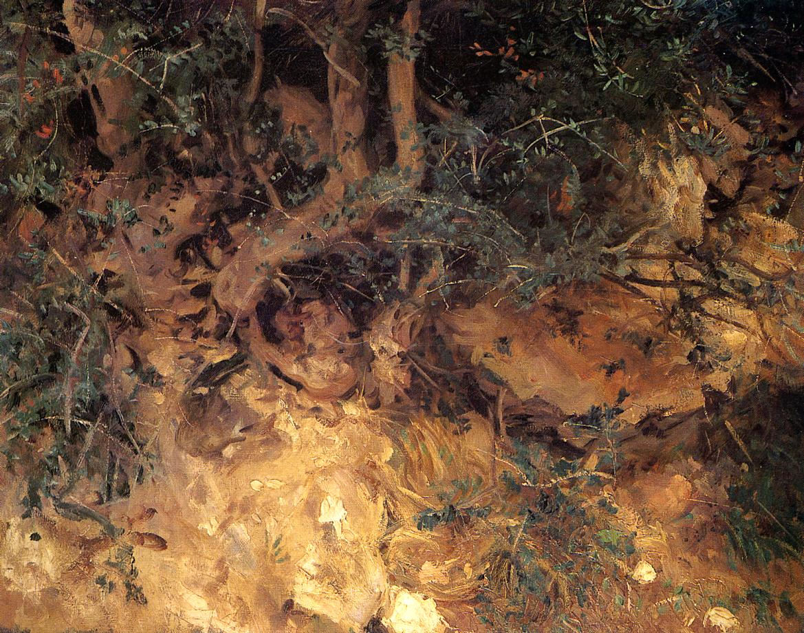 Valdemosa Majorca Thistles and Herbage on a Hillside 1908 | John Singer Sargent | Oil Painting