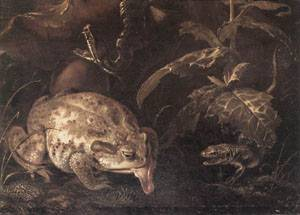 Still Life with Insects and Amphibians detail 1662 | Ottomarseus Van Schrieck | Oil Painting
