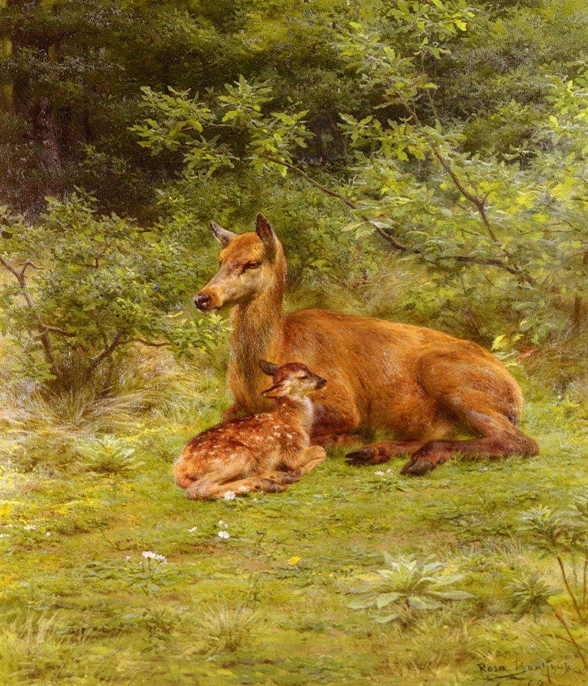Doe And Fawn In A Thicket | Rosa Maria Bonheur | Oil Painting