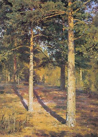 Sunlit Pines 1886 | Ivan Shishkin | Oil Painting