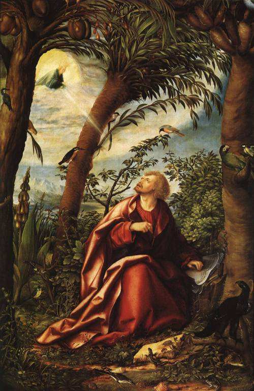 Panel from St. John Altar St. John the Evangelist on Patmos (St. John the Evangelist) | Hans Burgkmair the Elder 1518 | Oil Painting
