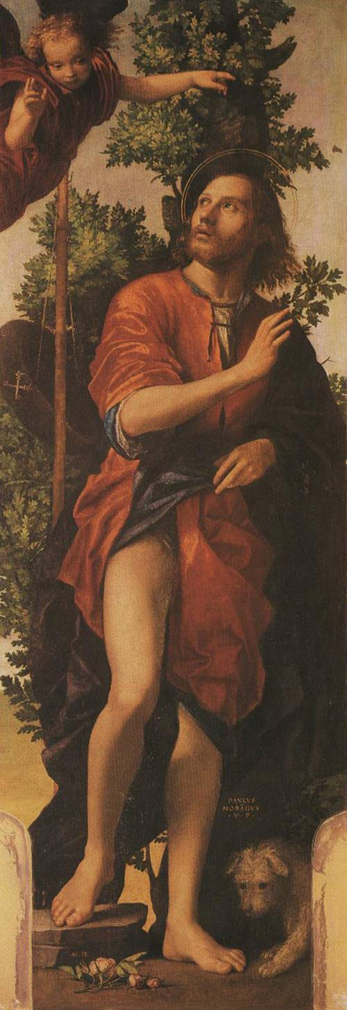 St. Roch (St. Roch) | Paolo Morando 1518 | Oil Painting