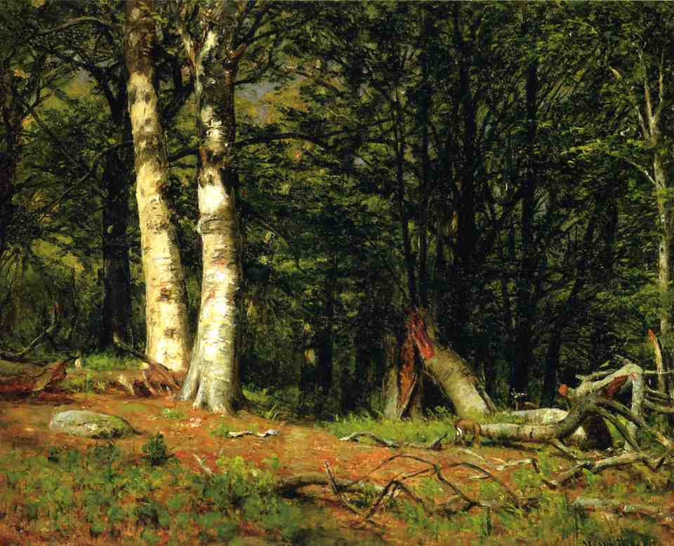 Fallen Birch | Thomas Worthington Whittredge | Oil Painting