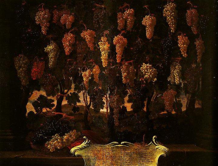 Grapes | Bartolomeo Bimbi | Oil Painting