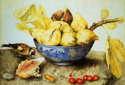 Chinese Cup with Figs Cherries and Goldfinch | Giovanna Garzoni | Oil Painting