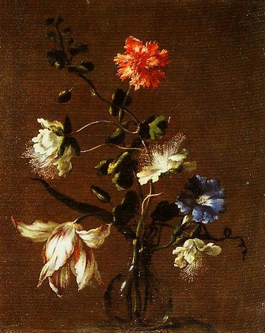 Three Caper Flowers a Carnation a Bindweed and a Tulip | Mario Dei Fiori | Oil Painting
