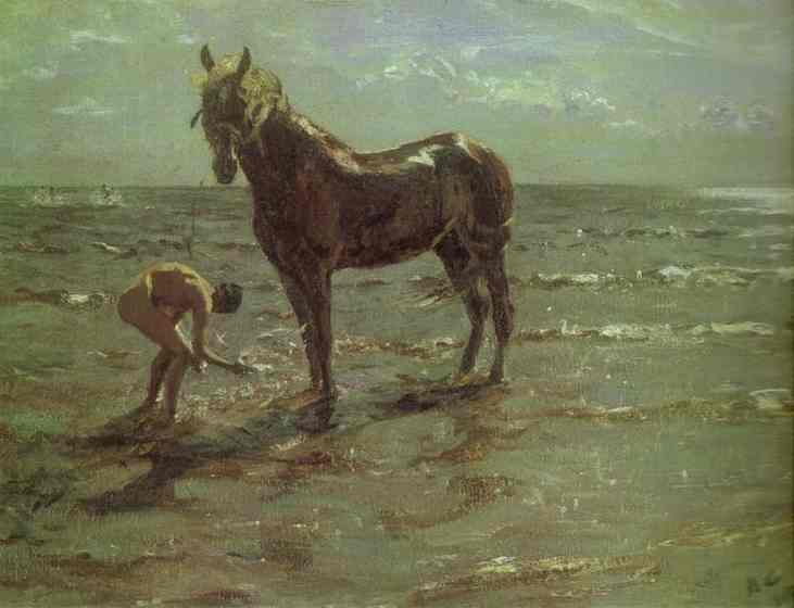 Bathing Of A Horse