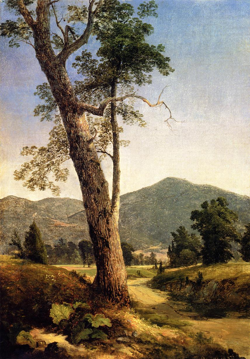 Landscape Beyond the Tree 1859 | Asher B Durand | oil painting