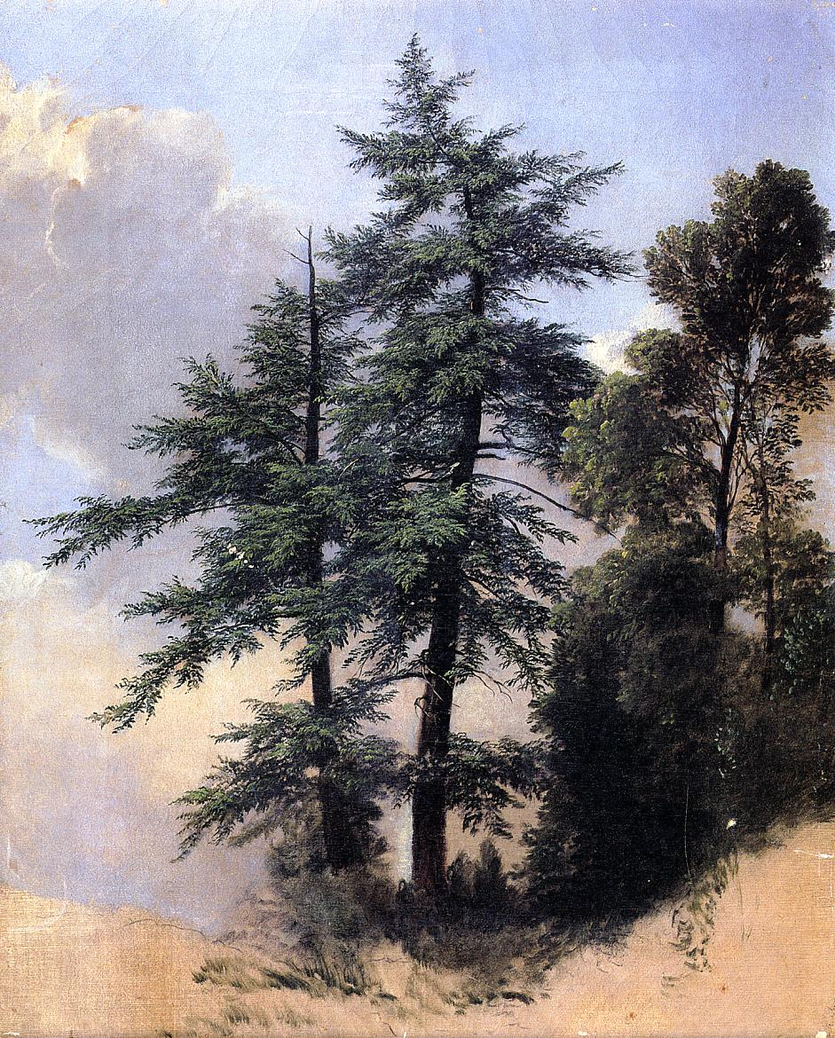 Nature Study Trees Newburth N.Y. 1849 | Asher B Durand | oil painting