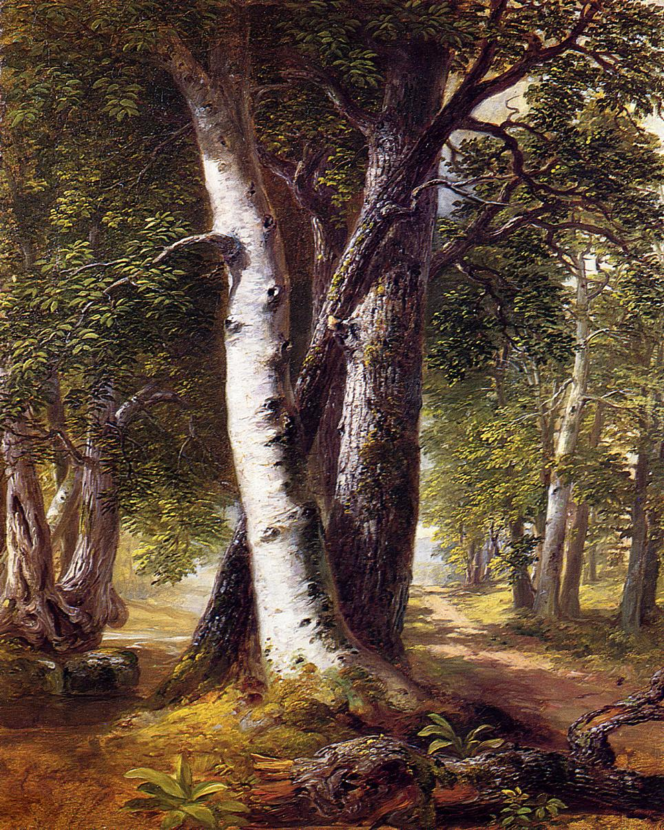 Woodland Path 1845-1850 | Asher B Durand | oil painting