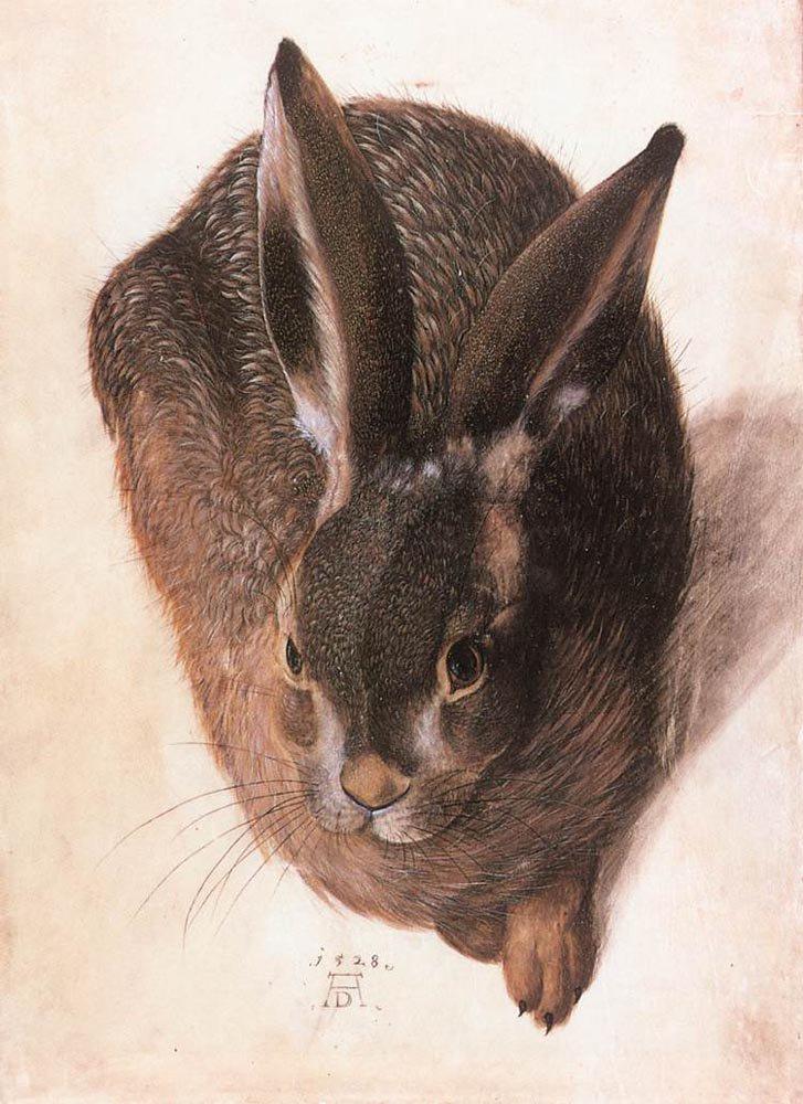 Hare 1528 | Hans Hoffmann | oil painting