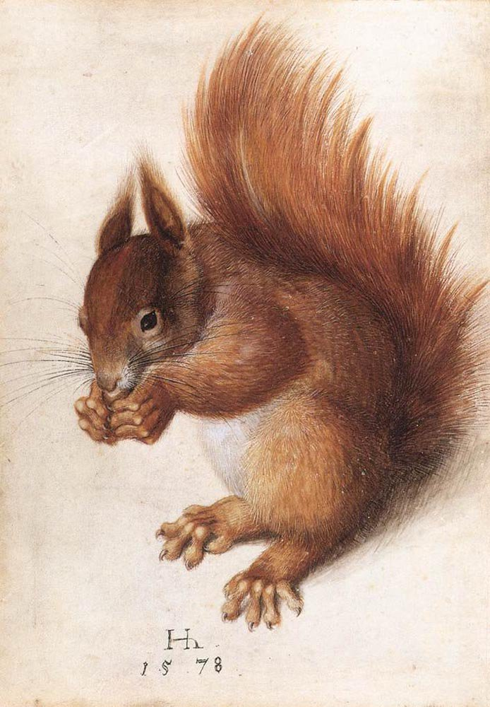 Squirrel 1578 | Hans Hoffmann | oil painting