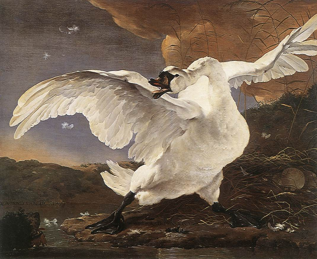 The Threatened Swan 1652 | Jan Asselyn | oil painting