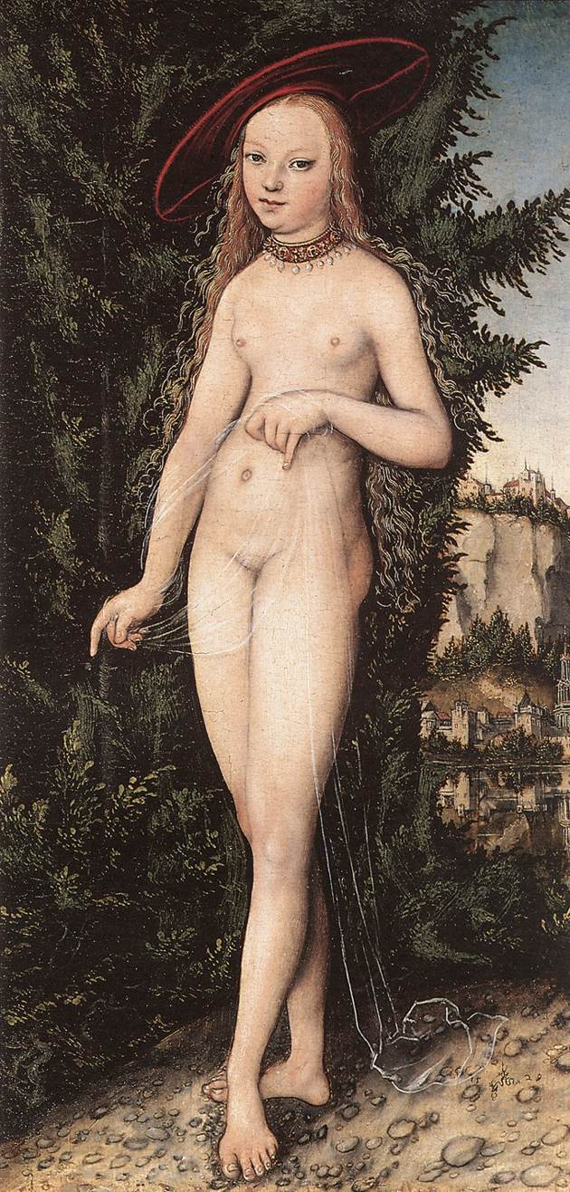 Venus Standing in a Landscape 1529   Lucas Cranach the Elder   oil painting