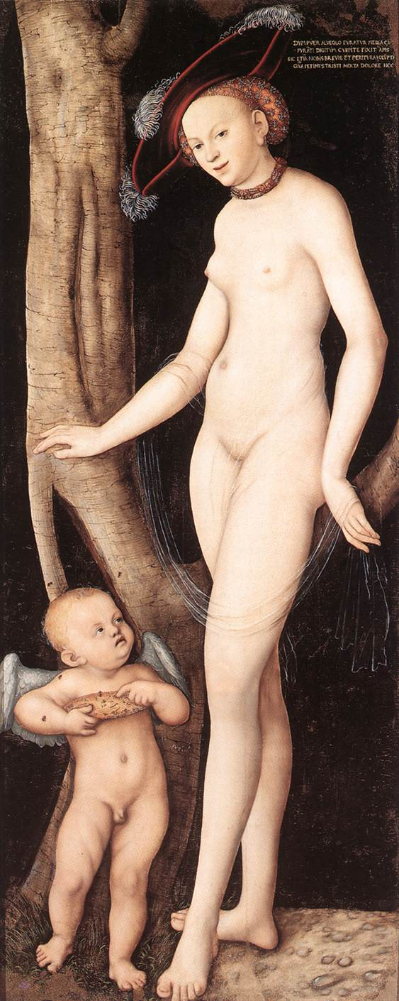 Venus and Cupid with a Honeycomb 1531   Lucas Cranach the Elder   oil painting