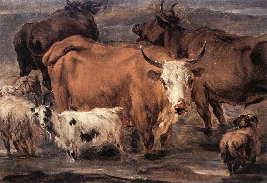 Animal Study | Nicolaes Berchem | oil painting