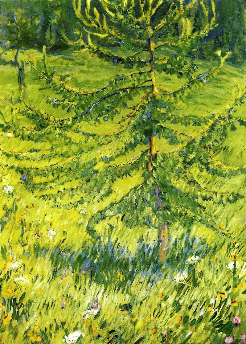 Larch Sapling 1908 | Franz Marc | oil painting