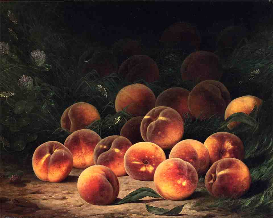 Bounty of Peaches   William Mason Brown   oil painting