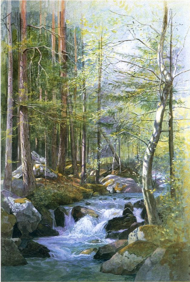 Torrent in Wood behind Mill Dam Vahrn near Brixen Tyrol 1885 | William Stanley Haseltine | oil painting