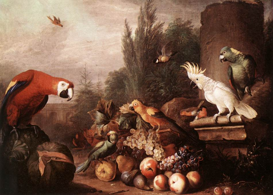 Still life with Birds 1710s | Jakab Bogdany | oil painting