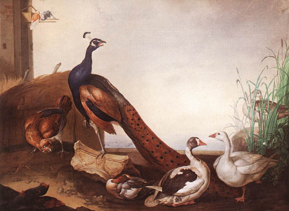 Peacock with Geese and Hen | Jakab Bogdany | oil painting