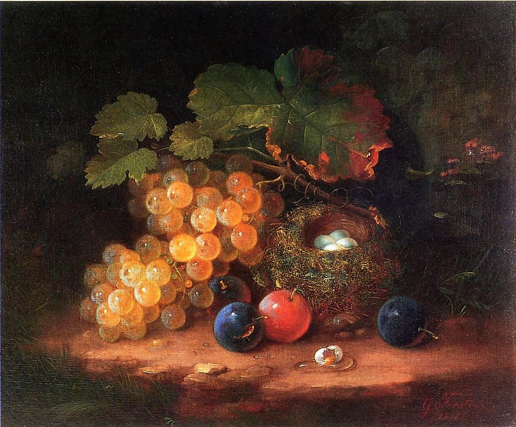 Still Life with Fruit Bird's Nest and Broken Egg 1876 | George Forster | oil painting