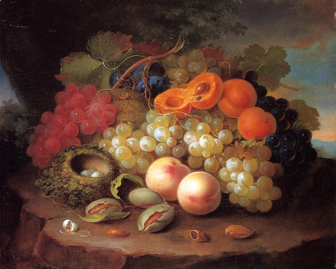 Still Life with Fruit and Bird's Nest Date unknown | George Forster | oil painting