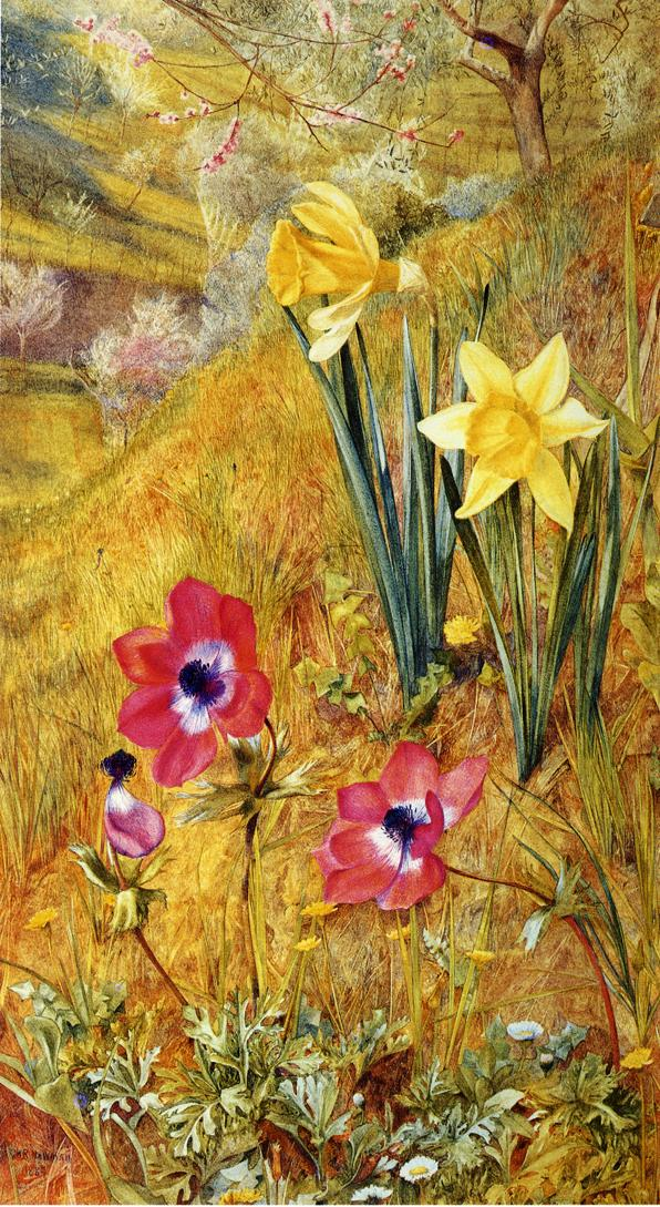 Anemones and Daffodils 1884 | Henry Roderick Newman | oil painting