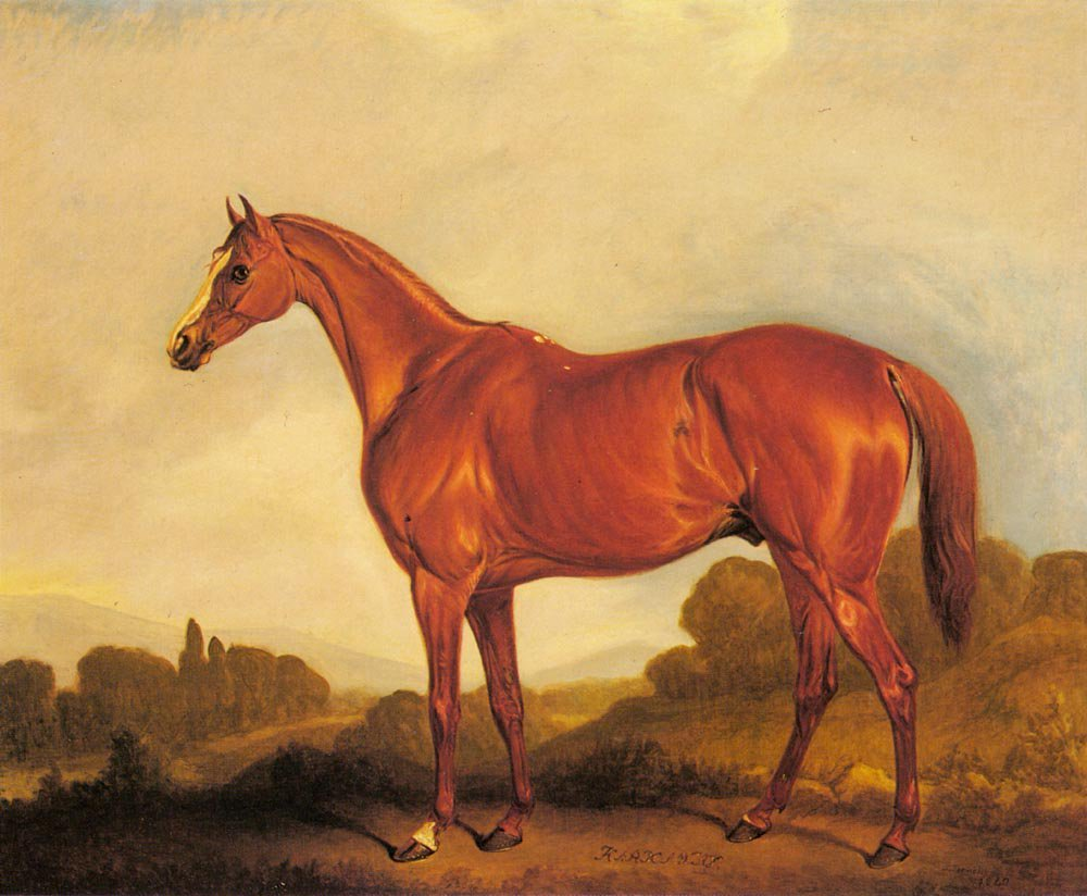 A Portrait of the Racehorse Harkaway the Winner of the 1838 Goodwood Cup | John Ferneley Snr | oil painting