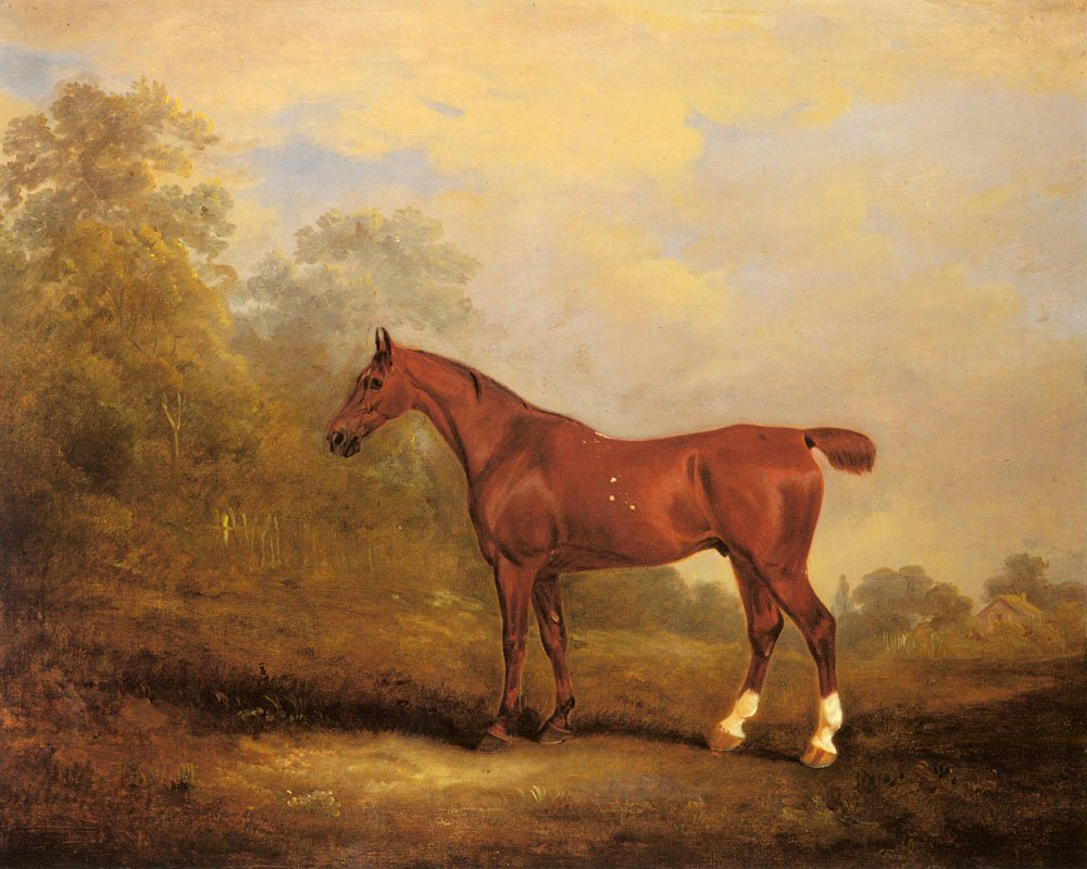 Cecil a favorite Hunter of the Earl of Jersey in a Landscape | John Ferneley Snr | oil painting