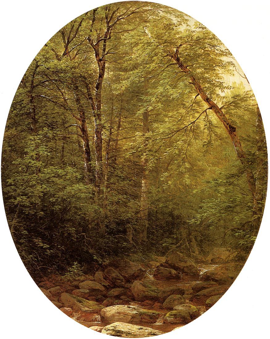Above the Falls Catskill 1862   John W. Casilear   oil painting