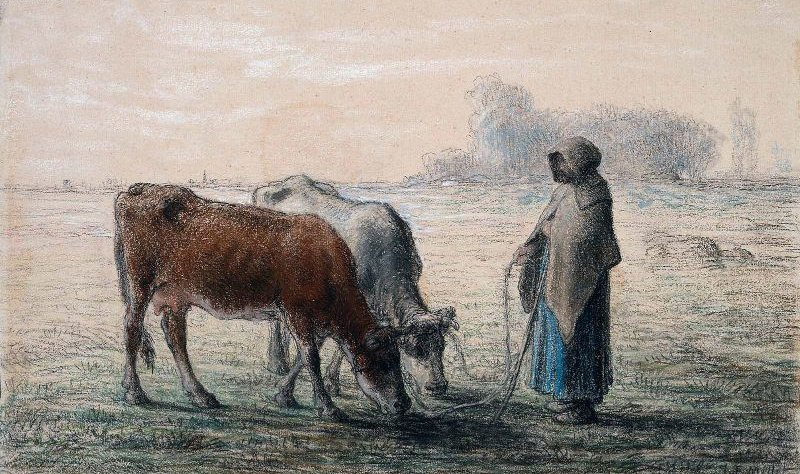 Peasant Girl with Two Cows 1863   Jean Francois Millet   oil painting