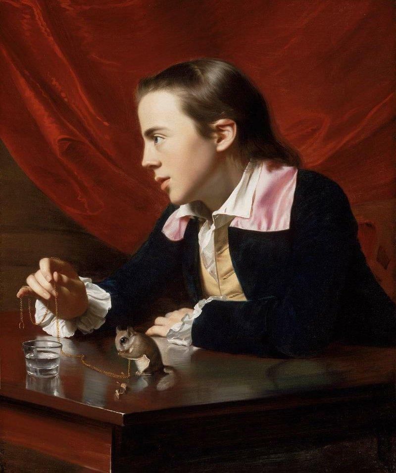 Henry Pelham Boy with a Squirrel 1765 | John Singleton Copley | oil painting