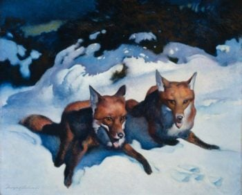 Two Foxes 1923 | George Hawley Hallowell | oil painting