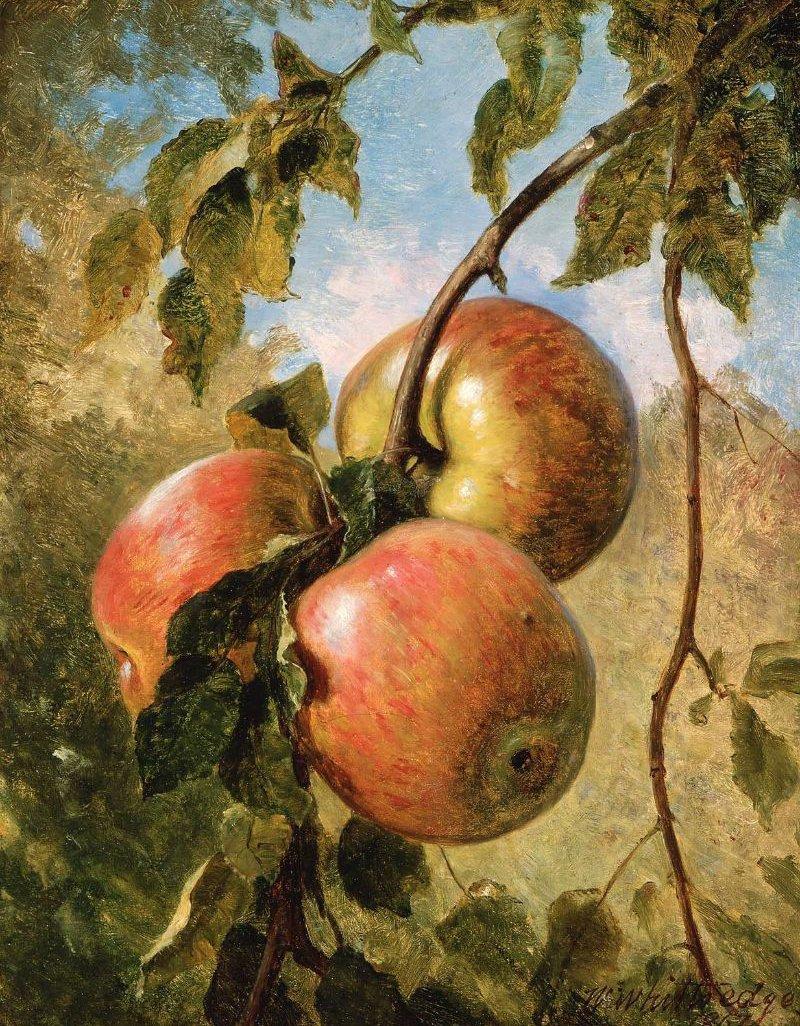 Apples 1867 | Thomas Worthington Whittredge | oil painting