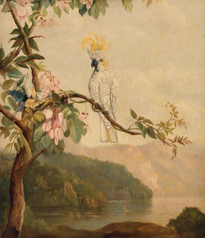 The Cockatoo early twentieth century | Unidentified artist | oil painting
