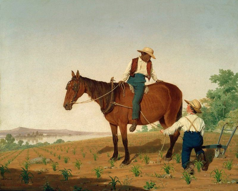 In the Cornfield 1844 | James Goodwyn Clonney | oil painting