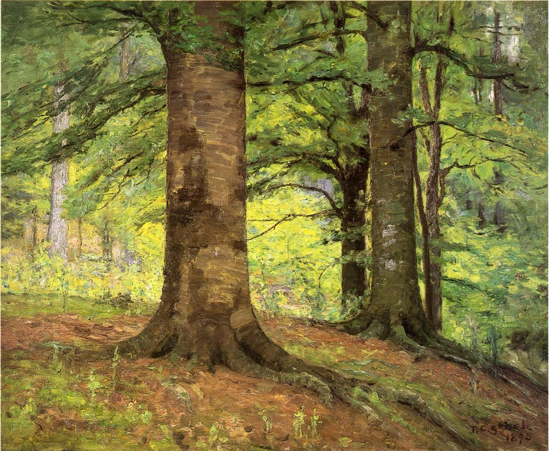 Beech Trees 1895 | Theodore Clement Steele | oil painting