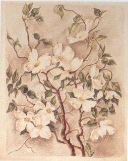 Flowering Dogwood | Caroline Harrison | oil painting