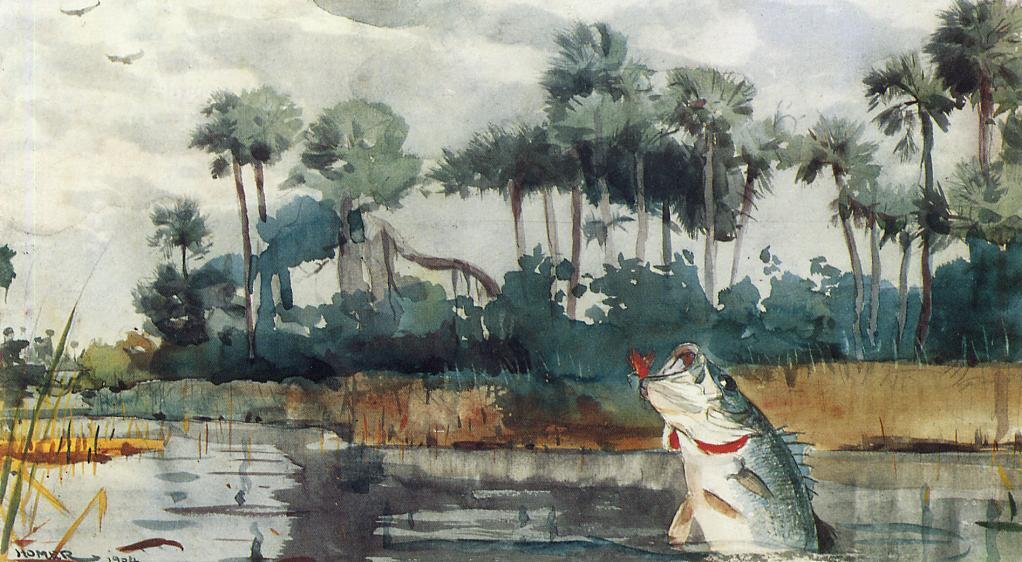 Black Bass Florida | Winslow Homer | oil painting